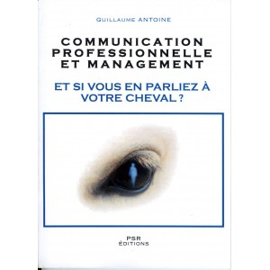 COMMUNICATION professionnelle et management